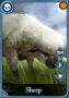 beasts:sheep.png