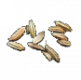 consumables:thundergrass_seeds.png