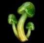 consumables:vigor_mushrooms.png